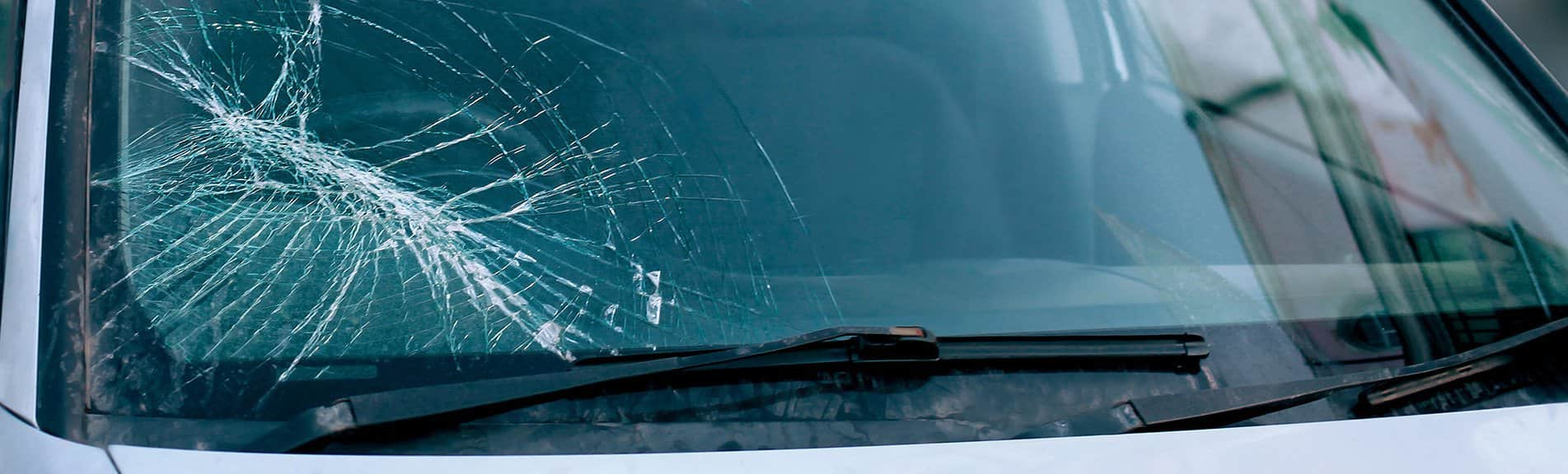 Windshield Replacement Services in Florida